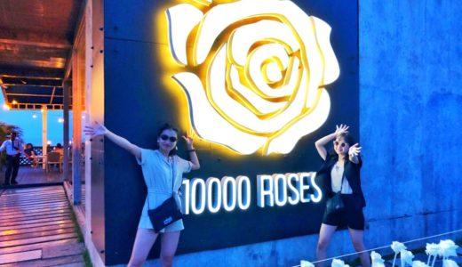 セブ島インスタスポット『10000 Roses Cafe & More』アクセス?入場料?滞在時間は?
